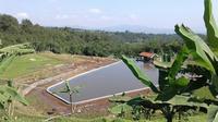 Para petani di Toli-Toli, Sulawesi Tengah, merasakan manfaatkan dari hadirnya embung. (Dok Kementan)