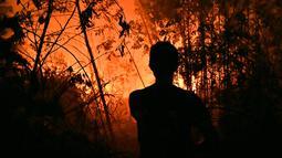 Petugas pemadam kebakaran memadamkan api saat kebakaran hutan dan lahan (karhutla) di Pekanbaru, Riau, Jumat (13/9/2019). Karhutla menyebabkan kualitas udara pada level berbahaya. (ADEK BERRY/AFP)