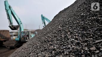 Saham ADRO Menguat Tersengat Kenaikan Harga Batu Bara dan Buyback