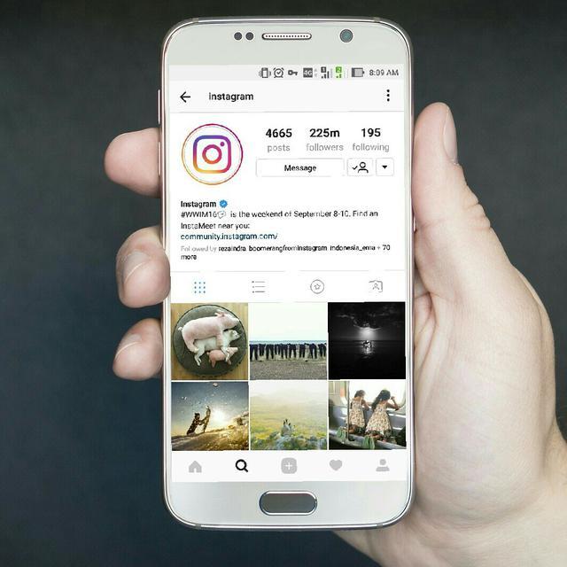 37 Bio Lucu Buat Instagram Bikin Akunmu Jadi Lebih Menarik Ragam Bola Com