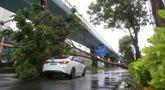 Sebuah mobil tertimpa pohon tumbang di Xiamen, Provinsi Fujian, China timur (11/8/2020). Mekkhala, topan keenam tahun ini, menerjang Wilayah Zhangpu di Provinsi Fujian, China timur, pada Selasa (11/8) sekitar pukul 07.30 waktu setempat. (Xinhua/Zeng Demeng)