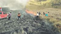 Petugas dan relawan berupaya memadamkan kebakaran di kawasan Gunung Bromo (BB TNBTS)