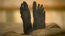 Kaki Mumi Raja Tutankhamun terlihat di makam bawah tanahnya (KV62) di Lembah Para Raja, Luxor, Mesir (31/1). Makam terkenal tersebut menjalani konservasi sembilan tahun oleh tim spesialis internasional. (AFP Photo/Mohamed El-Shahed)