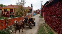 Warga menaiki kereta yang ditarik oleh kuda ketika melintas di dekat rumah yang temboknya penuh dengan gantungan paprika merah untuk dikeringkan, di Desa Donja Lakosnica, Serbia, 6 Oktober 2016. (REUTERS/Marko Djurica)