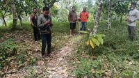 Foto: Warga Desa Kerirea, Kecamatan Magepanda, Kabupaten Ende, NTT mencari sinyal di ketinggian (Liputan6.com/Dion)