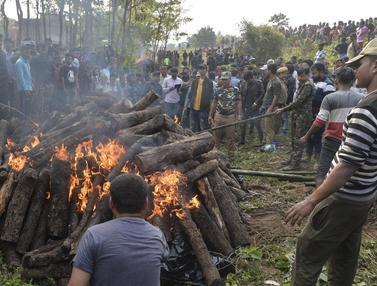 Mati Ditabrak Kereta, Dua Gajah di India Dibakar