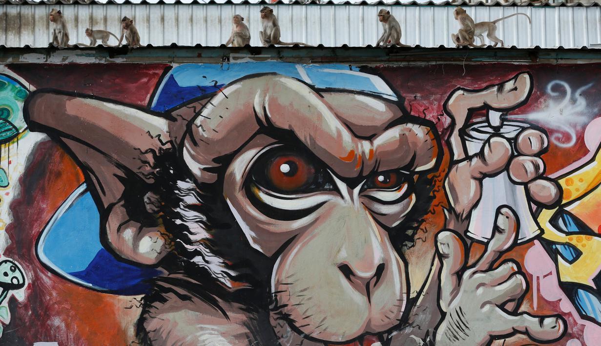 Sejumlah monyet duduk di dinding grafiti saat Festival Monkey Buffet, kawasan kuil Phra Prang Sam Yot, Bangkok, Thailand (27/11). Kota Lopburi menggelar jamuan bagi ratusan monyet. (REUTERS/Chaiwat Subprasom)