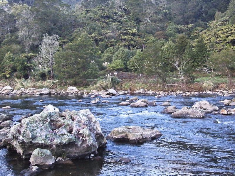 Masyarakat lokal menentang penambangan emas di Karangahake Gorge, Selandia Baru (Wikipedia)