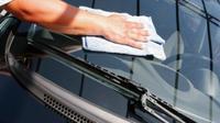 Jamur yang terdapat pada kaca mobil bagian depan dan belakang bisa menggangu visibilitas, khususnya ketika berkendara di malam hari.