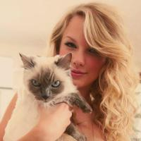 Namun seperti yang sudah diketahui, Taylor Swift sendiri sangat terobsesi dengan kucing dan hal itu membuat para penggemar bersemangat! (Netsuggest)