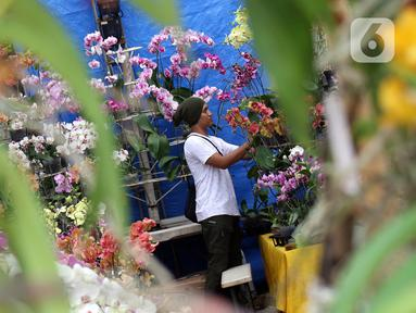 Pedagang menata bunga-bunga yang dijual pada pameran Keanekaragaman Hayati Nusantara Expo di Lapangan Banteng, Jakarta, Sabtu (30/11/2019). Pameran dalam rangka memperingati Hari Cinta Puspa dan Satwa Nasional 2019 ini berlangsung hingga 8 Desember mendatang. (Liputan6.com/Helmi Fithriansyah)