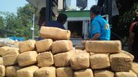 Barang bukti ganja di kantor BNN Propinsi Banten.