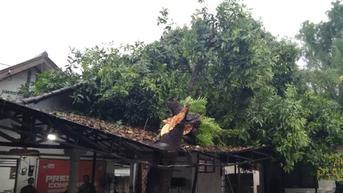 Gedung KPU Depok Tertimpa Pohon Akibat Hujan dan Angin Kencang
