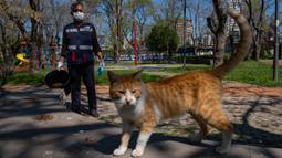 Seorang staf Kota Kadikoy memberi makan kucing liar di Istanbul, Turki, pada 18 April 2020. Bahar Cetinkaya dan timnya yang beranggotakan tiga orang menyusuri jalan di Istanbul dengan mobil membawa makanan kering untuk hewan seiring lockdown di kota tersebut akibat COVID-19. (Xinhua/Yasin Akgul)