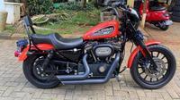 Moge Harley Davidson yang dicuri dan viral di sosial media. (Instagram @rranggarya)