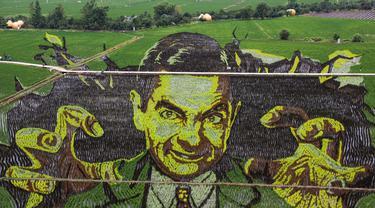 Foto udara gambar aktor Rowan Atkinson pemeran Mr. Bean yang dibuat dengan menggunakan varietas padi yang berbeda terlihat di sebuah sawah di Shenyang, provinsi Liaoning, China, 24 Juni 2020. Saat ini pembuatan karya lukis di sawah sudah menjadi tradisi para petani di daerah tersebut. (STR/AFP)