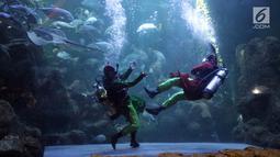 Atraksi pertarungan dalam air bertajuk The Battle of Yin Yang di Aquarium Utama Seaworld Ancol, Jakarta, Senin (12/2). Atraksi akan berlangsung setiap pukul 13.45 WIB. (Liputan6.com/Arya Manggala)