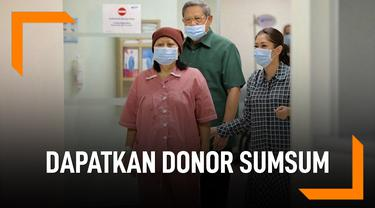 Sosok Pendonor Sumsum Tulang Belakang Ani Yudhoyono