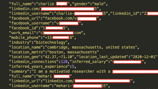 Itu dijual di darkweb mencakup informasi penting, meski tak ada password akun. (dok: 9to5Mac)