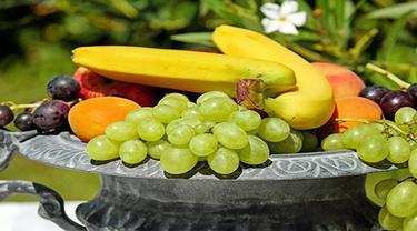 Ilsutrasi buah-buahan