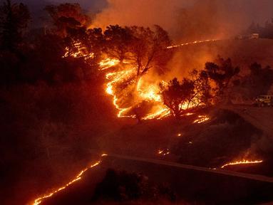 Api membakar lereng bukit di kawasan Sonoma, California, Amerika Serikat, Sabtu (26/10/2019). Kebakaran hutan kian tak terkendali akibat angin kencang yang bertiup. (AP Photo/Nuh Berger)