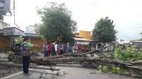 Pohon tumbang di Surabaya, Jawa Timur. (Foto: Liputan6.com/Dian Kurniawan)