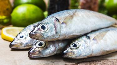 Daging Ikan di Jatim