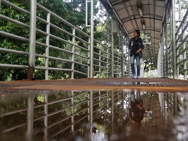 Pejalan kaki menyebrang di JPO Medan Merdeka Barat yang atapnya rusak di Jakarta, Jumat (19/1). Kondisi JPO yang penuh dengan genangan air dan atap yang rusak mengurangi kenyamanan bagi para pejalan kaki yang menggunakannya. (Liputan6.com/Johan Tallo)