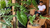 Menengok Halaman Rumah Anjasmara yang Nyaman dan Penuh Tanaman. (dok.Instagram @anjasmara/https://www.instagram.com/p/CJiS5E_hnkP/Henry)