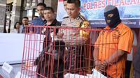 Lutung Jawa yang berhasil diselamatkan dari pedagang hewan langka. (Foto: Liputan6.com/Polres Cilacap/Muhamad Ridlo)
