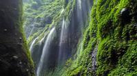 Air Terjun Madakaripura, Probolinggo, Jawa Timur. (adi_mrizal/Instagram)