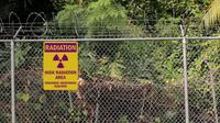 Tidak ingin melihat hewan terluka dan mati karena terkena zat radioaktif, wanita ini rela menolong hewan tersebut.