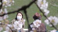 Wisatawan yang memakai masker menaiki perahu dayung sambal menikmati mekarnya bunga sakura di Tokyo, Senin (29/3/2021). Menyaksikan sakura dari atas perahu dayung sambil menyusuri aliran sungai memberikan pengalaman berbeda. (AP Photo/Koji Sasahara)