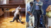 Beberapa foto ini menunjukkan kesamaan pose atau bentuk wajah dari seorang selebritas Hollywood dengan hewan tertentu.
