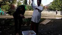 Dibantu pengajar, nampak eguh Prayoga (15), Siswa kelas X SMA Terpadu Pondok Pesantren Riyadul Ulum Waddawah Condong, Kota Tasikmalaya, tengah memasukan beberapa ular kobra ke dalam bekas air mineral (Liputan6.com/Jayadi Supriadin)