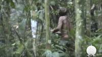 Foto seorang lelaki pribumi langka yang diyakini sebagai satu-satunya penyintas dari sebuah suku yang musnah dibantai di Amazon, Brasil puluhan tahun lalu (Funai / AP PHOTO via Sydney Morning Herald)
