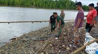 BKSDA melepasliarkan buaya di Sungai Roraya Konawe Selatan usai ditangkap warga di empang.(foto BKSDA untuk Liputan6.com)