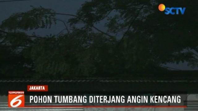 Sejumlah warga dibantu petugas pemadam kebakaran dan Suku Dinas Kehutanan Jakarta Timur berupaya mengevakuasi batang pohon dengan cara di potong.