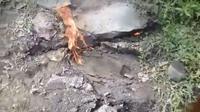 Retakan tanah longsor di Banjarnegara mengeluarkan api di Mojotengah, Banjarmangu, Banjarnegara. (Foto: Liputan6.com/Istimewa/Muhamad Ridlo)