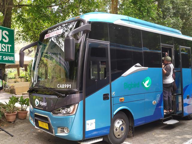 Bus Rute Blok M Taman Safari Bogor Resmi Diluncurkan News Liputan6 Com