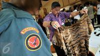 Petugas Kementerian Lingkungan Hidup dan Kehutanan (KLHK) menunjukkan kulit harimau saat menggelar barang bukti perdagangan hewan langka dan dilindungi di kantor KLHK, Jakarta, Jumat (15/1). (Liputan6.com/Johan Tallo)