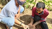 Mantan pecandu narkoba belajar budidaya jahe merah. (Liputan6.com/ Humas Pemko Padang)