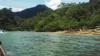 Sungai Subayang yang membelah kawasan Suaka Margasatwa Rimbang Baling di Kabupaten Kampar. (Liputan6.com/M Syukur)