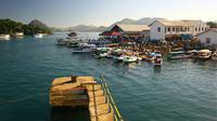 Selain berpetualang dari ujung timur Larantuka sampai ke barat Labuan Bajo, ada juga gerakan Sejuta Cangkir Kopi Flores yang siap menemani.