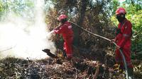 Personel Manggala Agni di Riau mendinginkan lokasi kebakaran lahan. (Liputan6.com/M Syukur)
