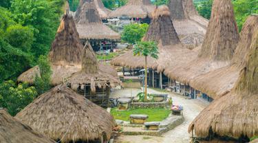 Kampung Adat Praijing dan Perkembangan Terkini Desa Tebara di Sumba Barat
