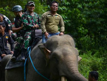 Gajah Jinak Ikut Operasi Gaktib Hutan dan Satwa