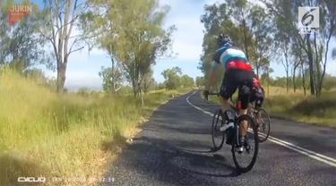 Beredar rekaman video seorang wanita ditabrak seekor kangguru saat bersepeda.