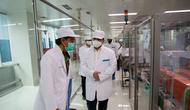 Ketua Pelaksana Komite Penanganan Covid-19 dan Pemulihan Ekonomi Nasional Erick Thohir, memastikan Bio Farma mampu memproduksi vaksin Covid-19 sebanyak 250 juta dosis pertahun. (Foto: Tim Komunikasi Komite Penanganan Covid-19 dan Pemulihan Ekonomi Nasional)
