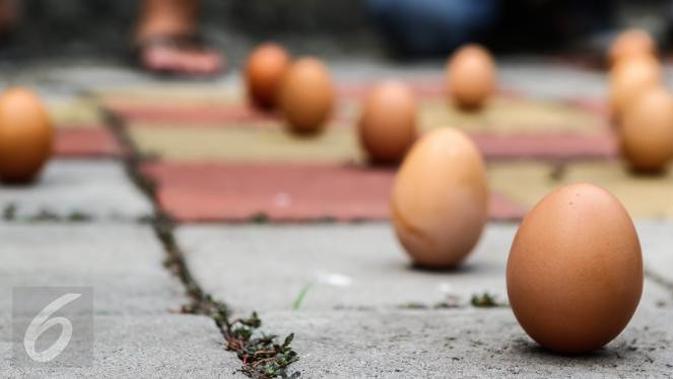 Ilustrasi telur ayam  (Liputan6.com/Fery Pradolo)